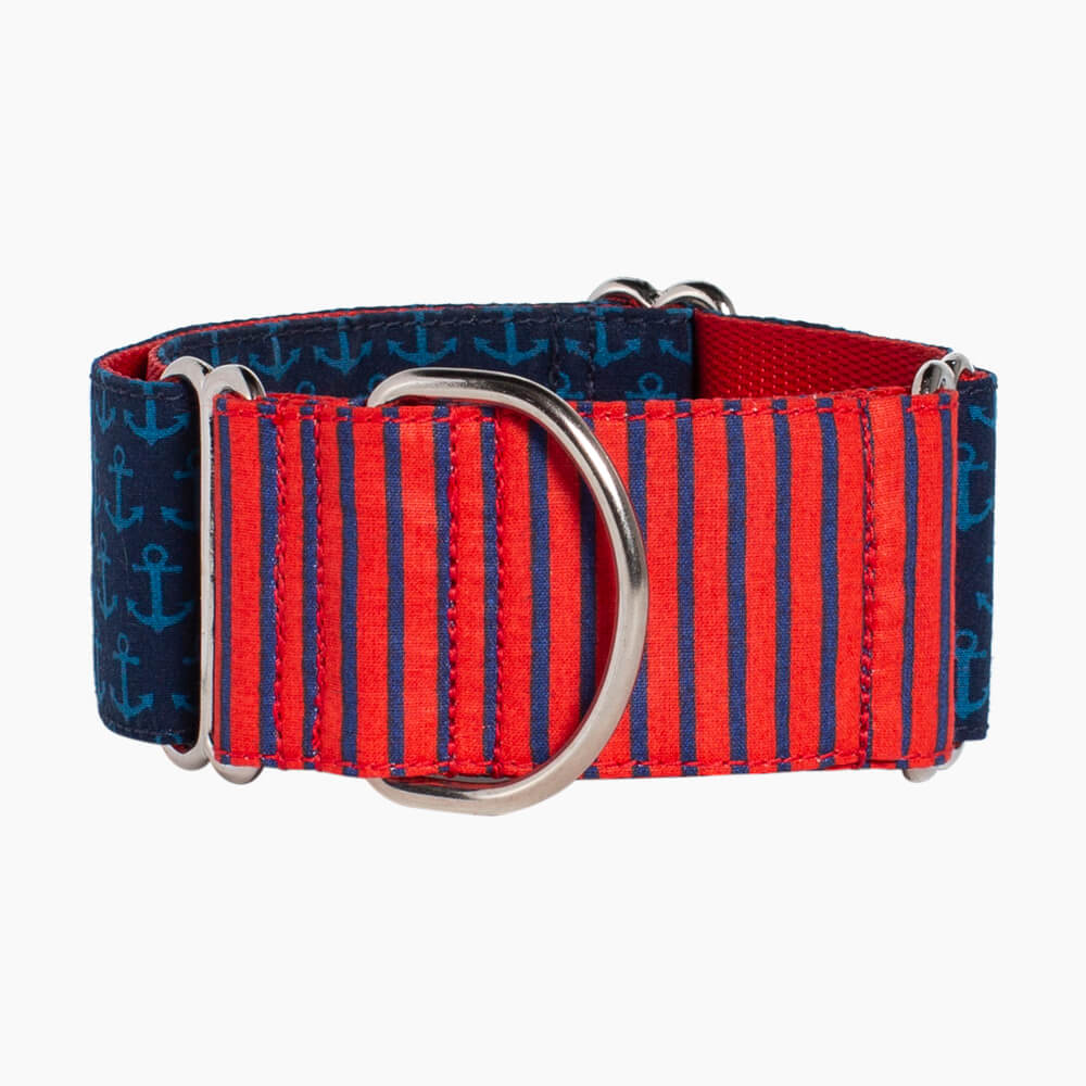 collar para perro Red Anchor